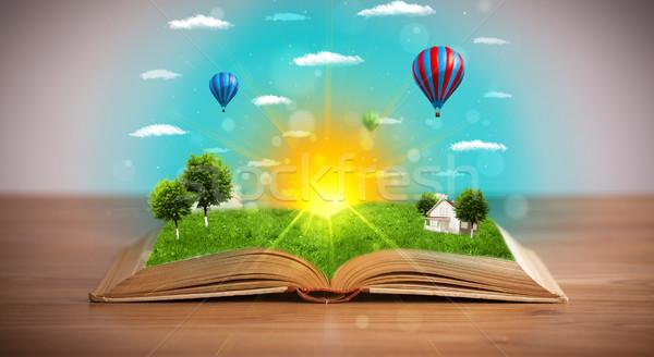 Nyitott könyv zöld természet világ ki oldalak Stock fotó © ra2studio