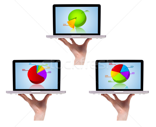 Dimensional colorful chart collection in laptop 2 Stock photo © ra2studio
