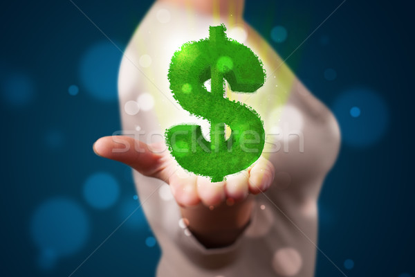 Jeune femme vert signe du dollar jeunes Photo stock © ra2studio
