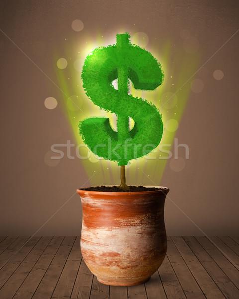 Signe du dollar arbre sur pot à fleurs brillant affaires Photo stock © ra2studio