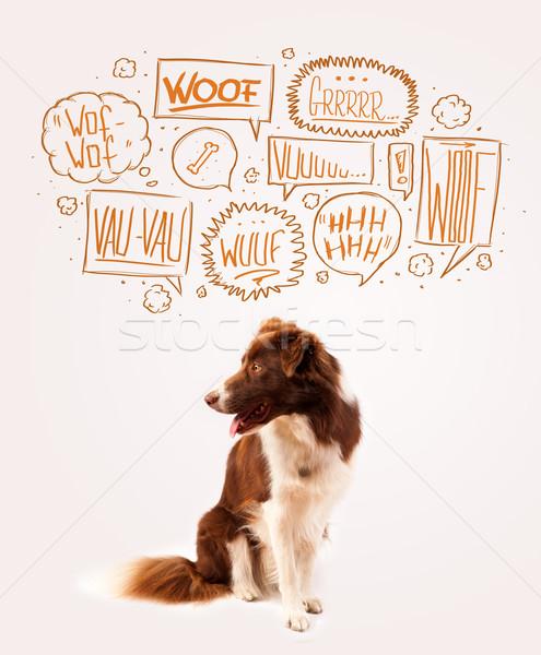 Cute dog with barking bubbles Stock photo © ra2studio