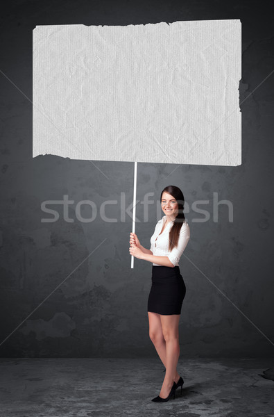 Businesswoman with blank booklet paper Stock photo © ra2studio