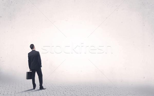 Сток-фото: элегантный · человек · Постоянный · назад · серьезный · деловой · человек