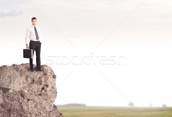 幸せ セールスマン 崖 国 成功した 格好良い ストックフォト © ra2studio