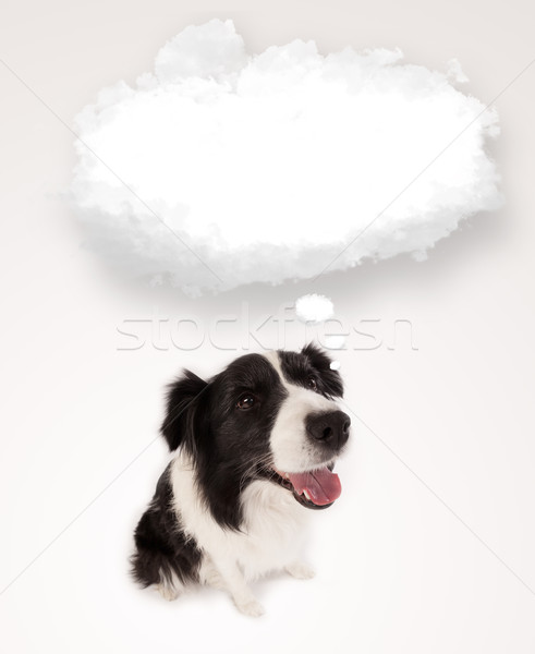 Cute dog with empty cloud bubble Stock photo © ra2studio
