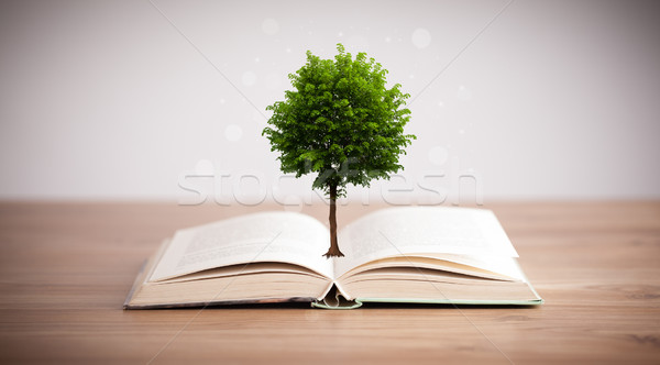 Tree growing from an open book Stock photo © ra2studio