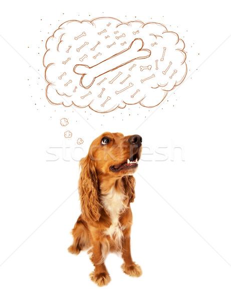 Bonitinho cão balão de pensamento pensando osso sessão Foto stock © ra2studio