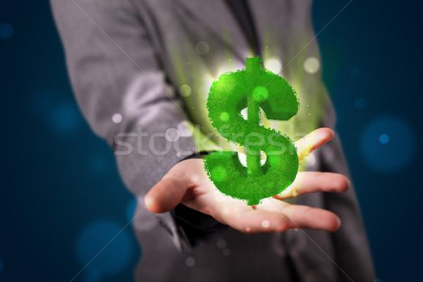 молодые бизнесмен зеленый знак доллара Сток-фото © ra2studio