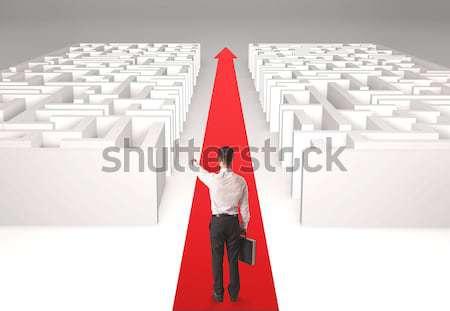 Zakenvrouw labyrint geslaagd eenvoudige oplossing vrouw Stockfoto © ra2studio