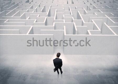 Eladó személy áll labirintus bejárat jól kinéző Stock fotó © ra2studio