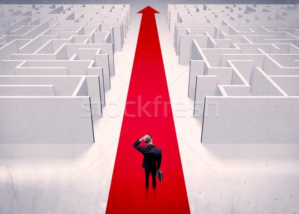 Okos üzletember labirintus felnőtt elegáns áll Stock fotó © ra2studio