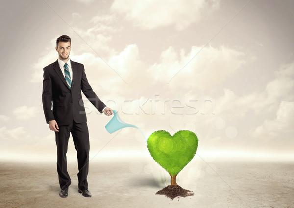 üzletember locsol szív alakú zöld fa pénz Stock fotó © ra2studio