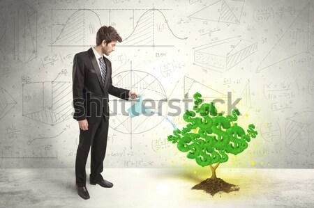 Homem de negócios crescente verde cifrão árvore Foto stock © ra2studio