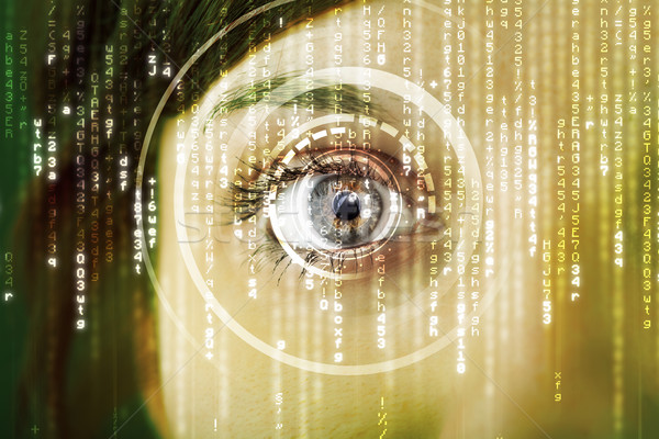 Modern cyber woman with matrix eye  Stock photo © ra2studio