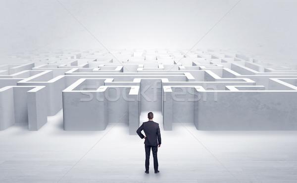 Businessman choosing between entrances at the edge of a maze Stock photo © ra2studio
