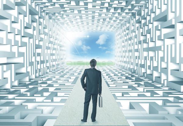 Empresário labirinto bem sucedido complicado parede fundo Foto stock © ra2studio
