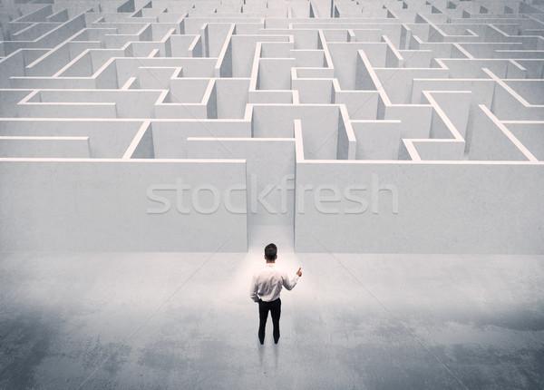 Ventes personne permanent labyrinthe entrée bonne recherche Photo stock © ra2studio