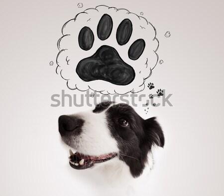 Aranyos juhászkutya mancs fölött fej feketefehér Stock fotó © ra2studio