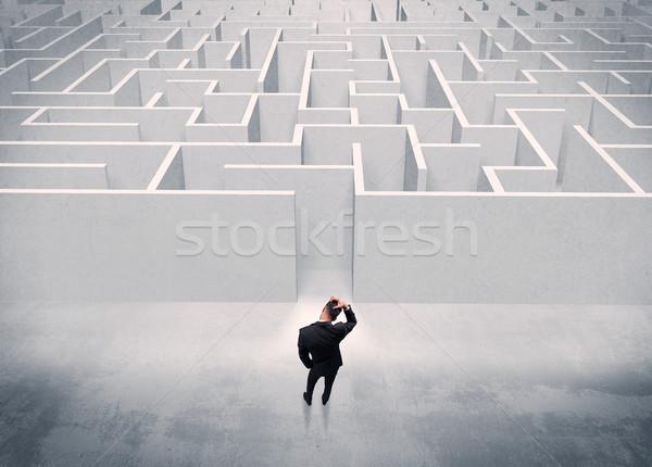 Сток-фото: продажи · человек · Постоянный · лабиринт · вход · красивый