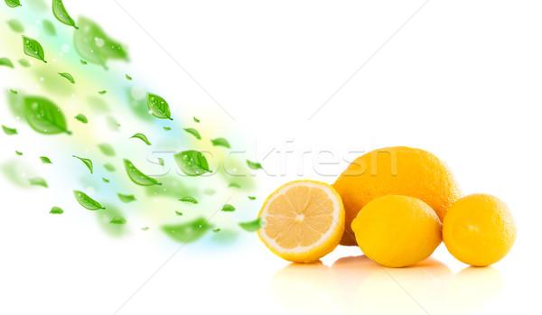 Renkli meyve yeşil organik su ağaç Stok fotoğraf © ra2studio