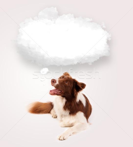 Bonitinho cão vazio nuvem bolha marrom Foto stock © ra2studio