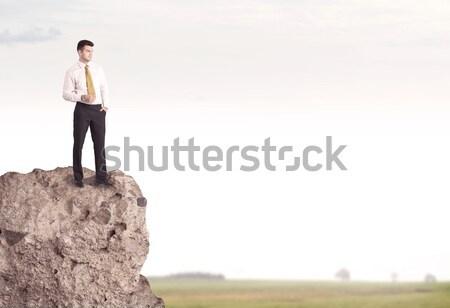 Businesswoman on rock mountain Stock photo © ra2studio
