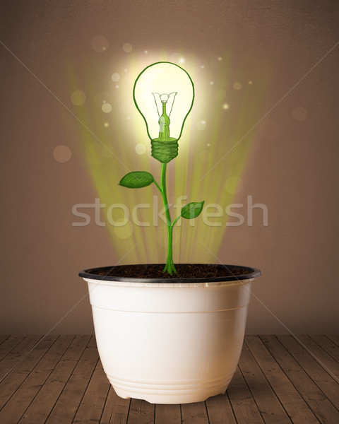 Lightbulb plant coming out of flowerpot Stock photo © ra2studio