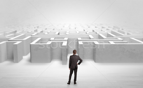 Businessman choosing between entrances at the edge of a maze Stock photo © ra2studio