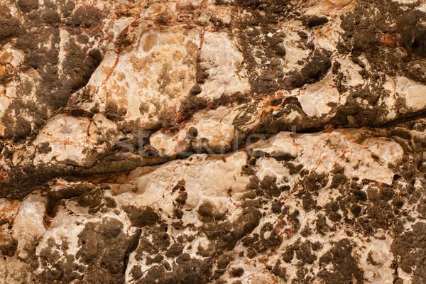 Textuur stenen muur muur abstract natuur verf Stockfoto © ra2studio