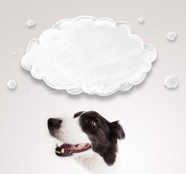 Cute border collie lege wolk zwart wit boven Stockfoto © ra2studio