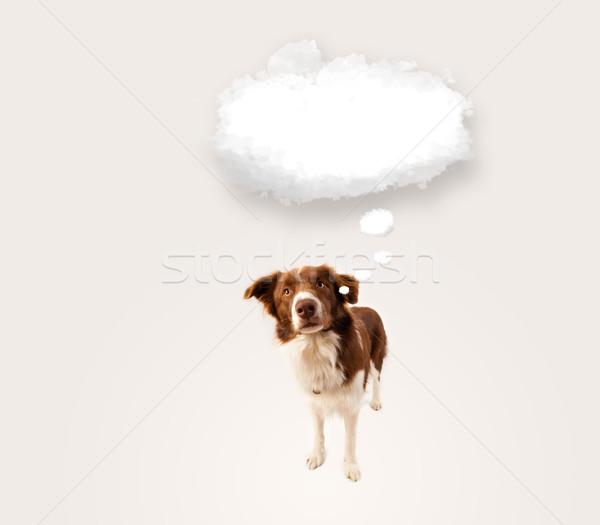Cute hond lege wolk bubble bruin Stockfoto © ra2studio