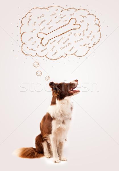 ボーダーコリー 思考バブル 思考 骨 かわいい ブラウン ストックフォト © ra2studio