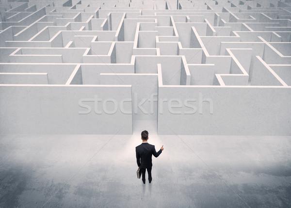 Stock fotó: Eladó · személy · áll · labirintus · bejárat · jól · kinéző