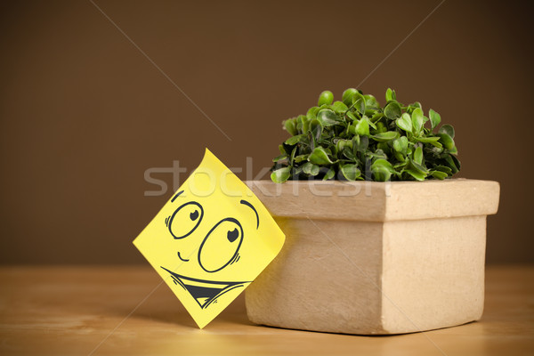 Post-it note with smiley face sticked on flowerpot Stock photo © ra2studio