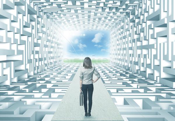 üzletasszony labirintus sikeres bonyolult nő nők Stock fotó © ra2studio