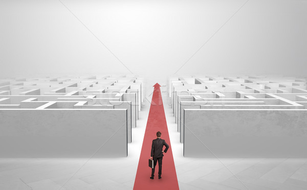 Businessman going straight ahead between two mazes Stock photo © ra2studio