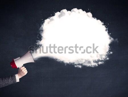 Megaphone with plain message cloud Stock photo © ra2studio