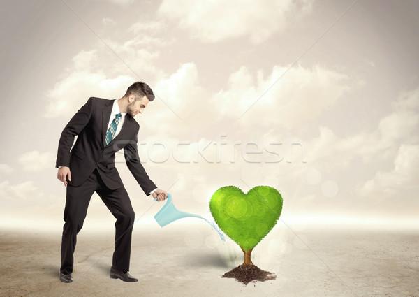 Business man watering heart shaped green tree Stock photo © ra2studio