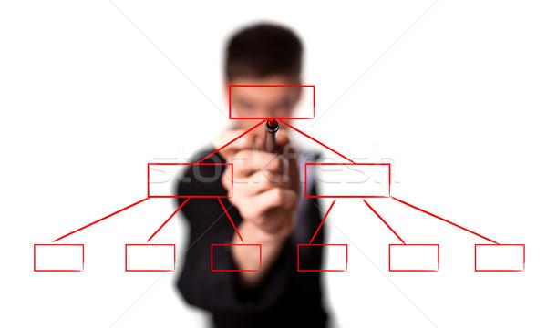 businessman drawing a flowchart on a whiteboard Stock photo © ra2studio