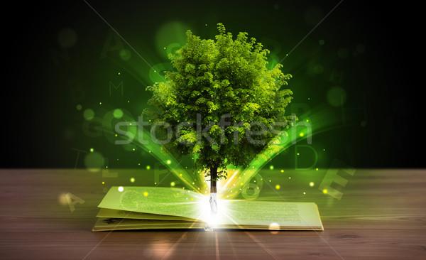 Otwarta księga magiczny promienie świetle Zdjęcia stock © ra2studio