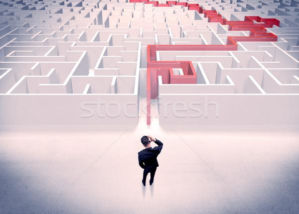 Maze solved for businessman concept Stock photo © ra2studio