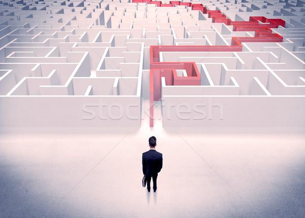 ストックフォト: 迷路 · ビジネスマン · スーツ · 迷路 · 赤