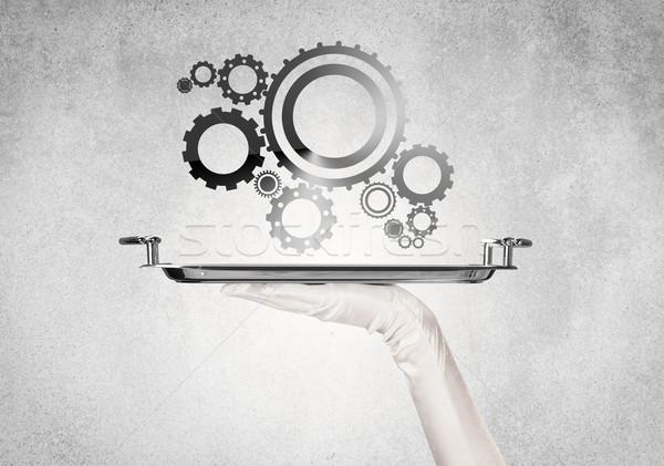 Working cog wheel concept on tray Stock photo © ra2studio