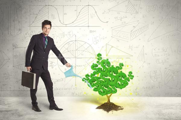 Business man watering a growing green dollar sign tree Stock photo © ra2studio