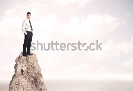 快樂 商人 常設 懸崖 成功 銷售 商業照片 © ra2studio