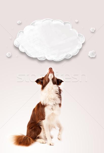 Aranyos juhászkutya üres felhő barna fehér Stock fotó © ra2studio