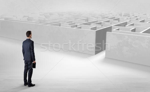 Zakenman labyrint uitdagen klaar objecten Stockfoto © ra2studio