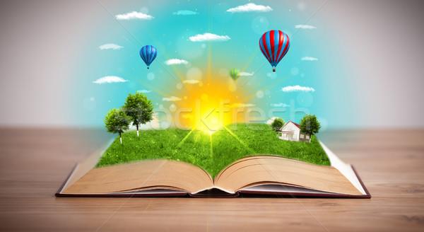Stok fotoğraf: Açık · kitap · yeşil · doğa · dünya · dışarı