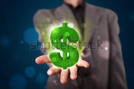 Młodych biznesmen zielone znak dolara Zdjęcia stock © ra2studio