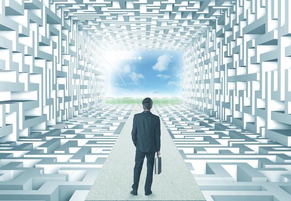 Foto d'archivio: Imprenditore · labirinto · di · successo · muro · sfondo